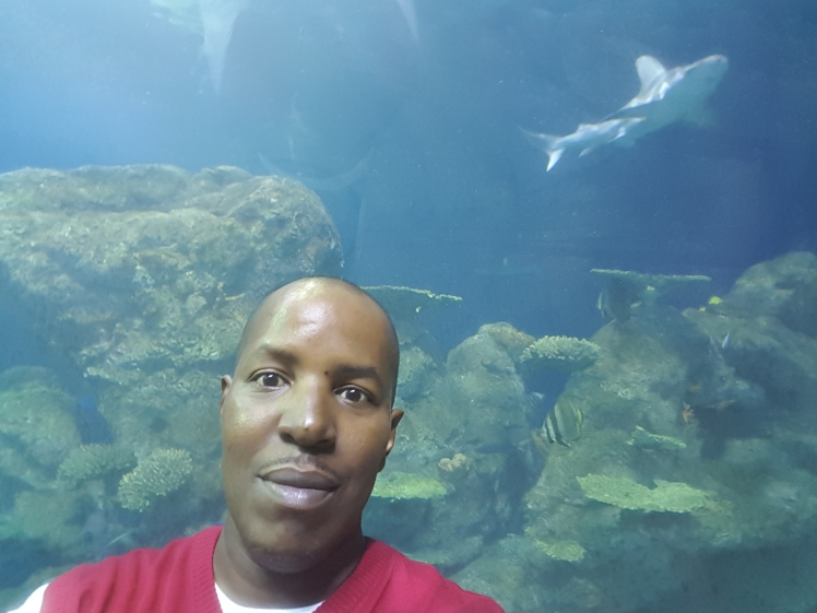 F. Kenneth Taylor @ The Downtown Aquarium ~ Denver, CO 2016
